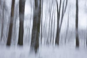 Gerie Hermans-NAK Gerie-4.jpg