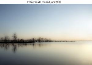 2019-06 Foto van de maand juni 2019 Helene klein .jpg