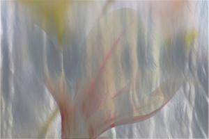 herman-monet-3.jpg