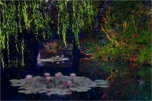 Dorien-4-brug met lelies.jpg
