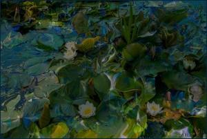 Dorien-7-Lelies 2.jpg