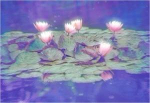Dorien-8-Lelies.jpg