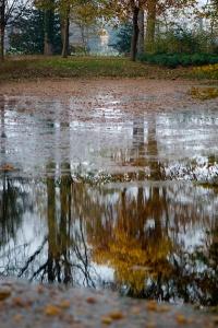 Het park rond Schaep en Burgh 02