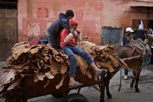 marokko-6.jpg