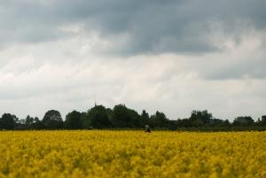 Limburg_mei13_411.jpg